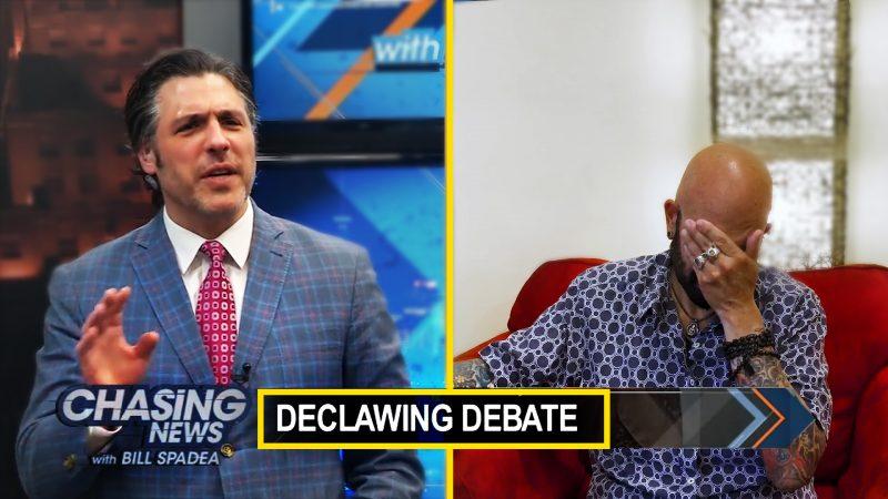 Declawing Debate – Jackson's Response