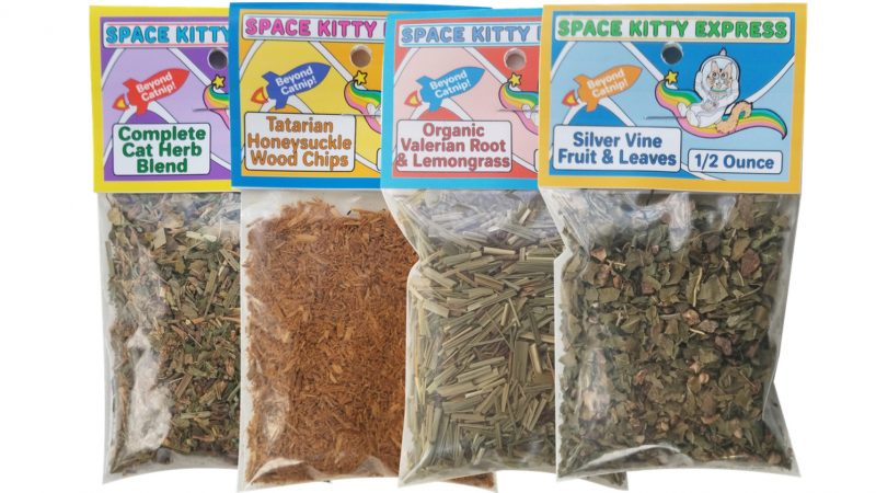 """Catnip Alternatives (For Cats """"meh"""" about Catnip)"""